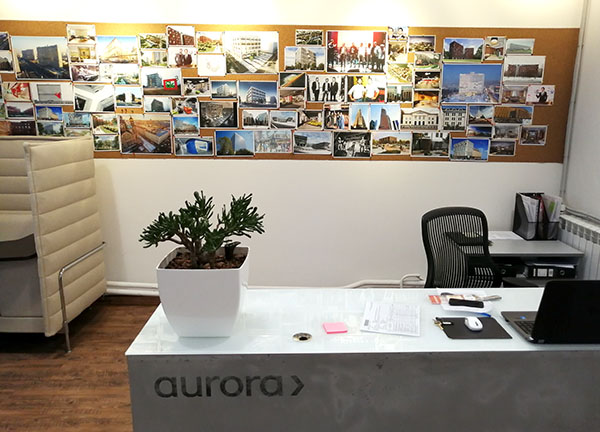 Портфолио фитокорпорации озеленение офисов