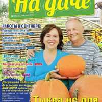 42098887.cover