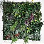 озеленение мхом и растениями