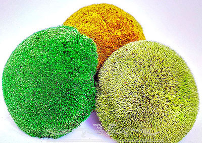 мох цветная кочка
