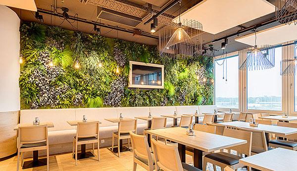 стены из растений и мха - бесплатный проект в подарок !