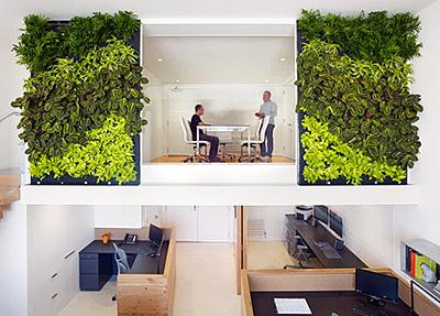 озеленение офисов в Москве