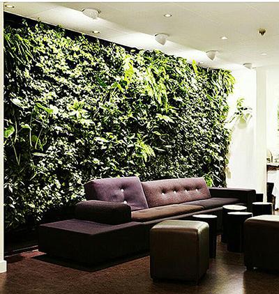 фитостена вертикальное озеленение