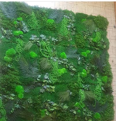 картины из растений