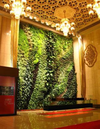 озеленение интерьера и помещений