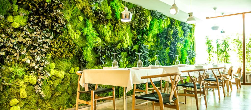 Озеленение интерьеров помещений
