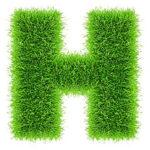 озеленение мох лого