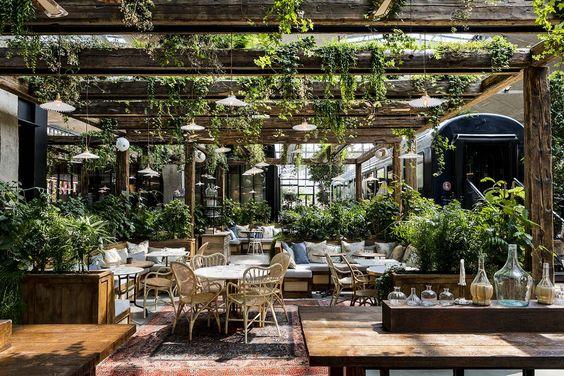 озеленение ресторана и кафе