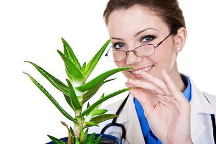 специалист по уходу за растениями, цветами в Москве