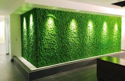 искусственное озеленение купить
